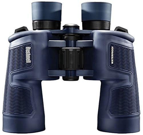 Binoculars optics
