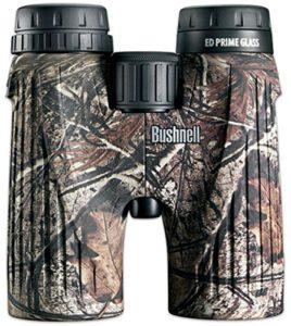 Best coyote hunting binoculars