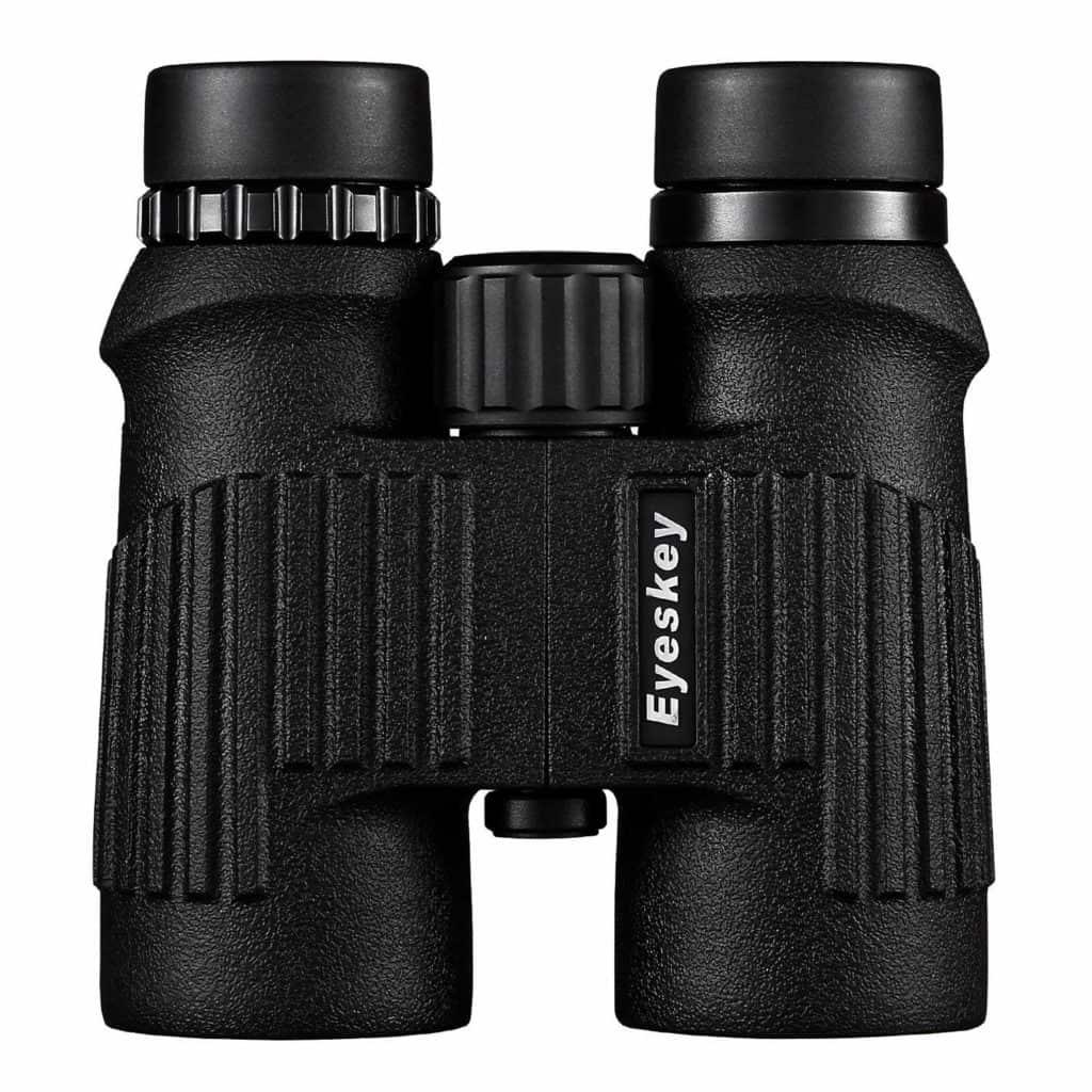 Best Binoculars for sea Viewing