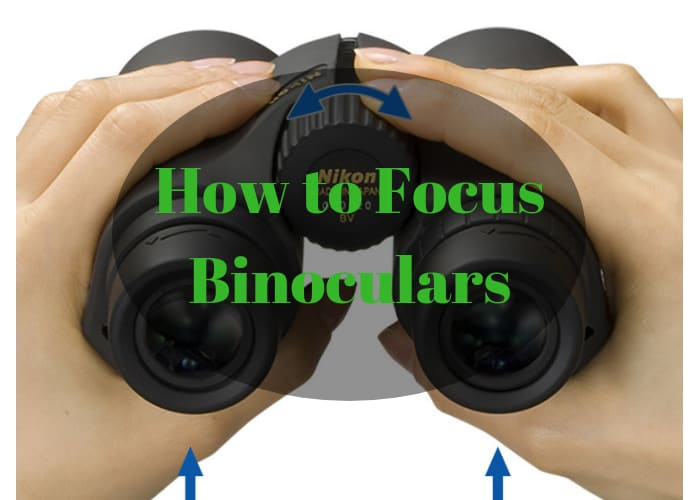 how to focus binoculars