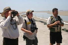 8x42 vs 10x42 and 10x50, 8x42 vs 10x42 and 10x50 for birding, hunting