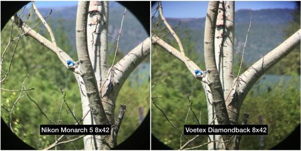 Nikon Monarch 5 vs Vortex Diamondback HD binoculars