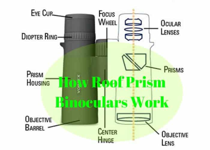 How Do Roof Prism Binoculars Work