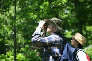 Choosing Birding Binoculars