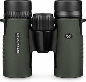 Best Budget Compact Binoculars for Bird Watching and Hiking