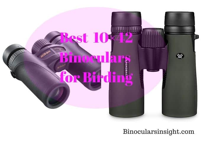 Best 10×42 Binoculars for Birding